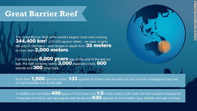 The Top 5 Sustainability Infographics Of 2013